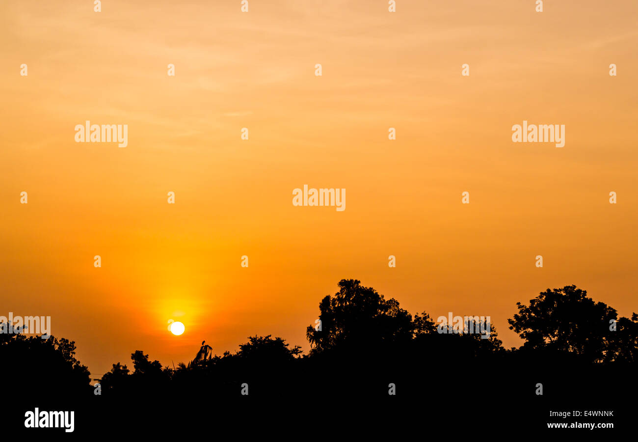 The sun rises in a summer, Thailand. morning - Stock Image