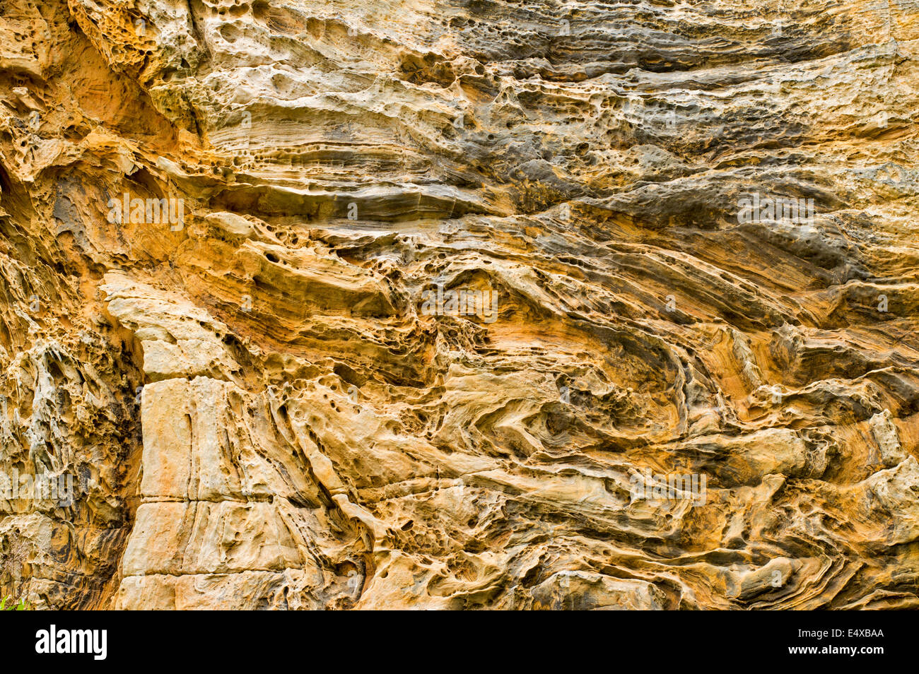 SANDSTONE WEATHERED AND ERODED BY WIND AND SEA NEAR  HOPEMAN ON THE MORAY COAST SCOTLAND - Stock Image
