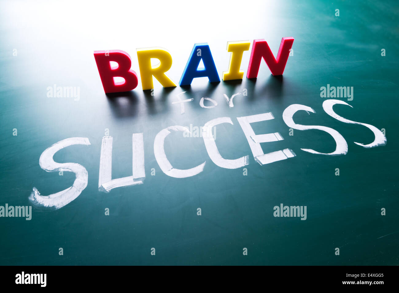 Brain for success concept - Stock Image