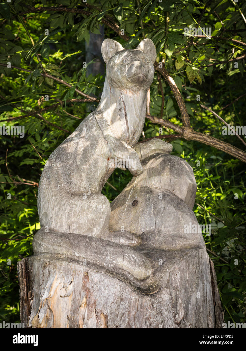 A wooden sculpture of a pine marten, carved from a tree trunk, along a nature trail in Switzerland - Stock Image
