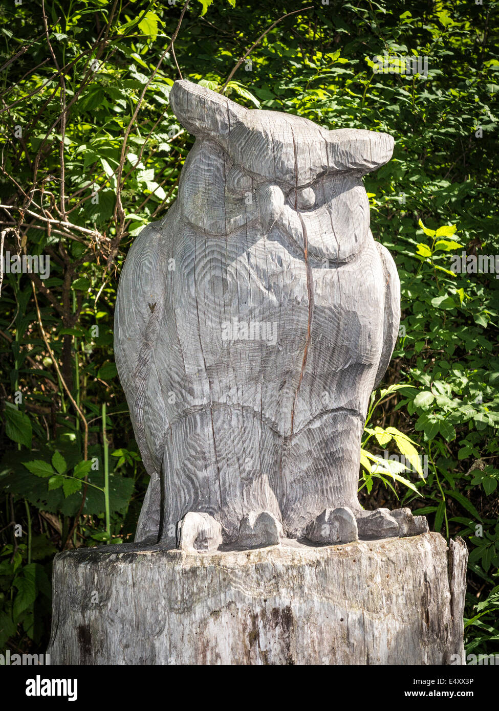 A wooden sculpture of an owl, carved from a tree trunk, along a nature trail in Switzerland - Stock Image