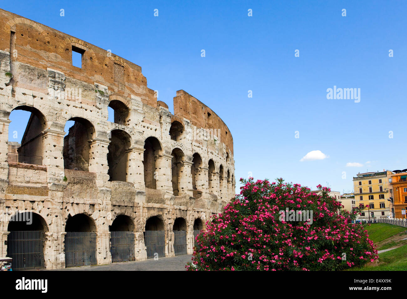 Italy. Rome. The ancient Collosseo - Stock Image