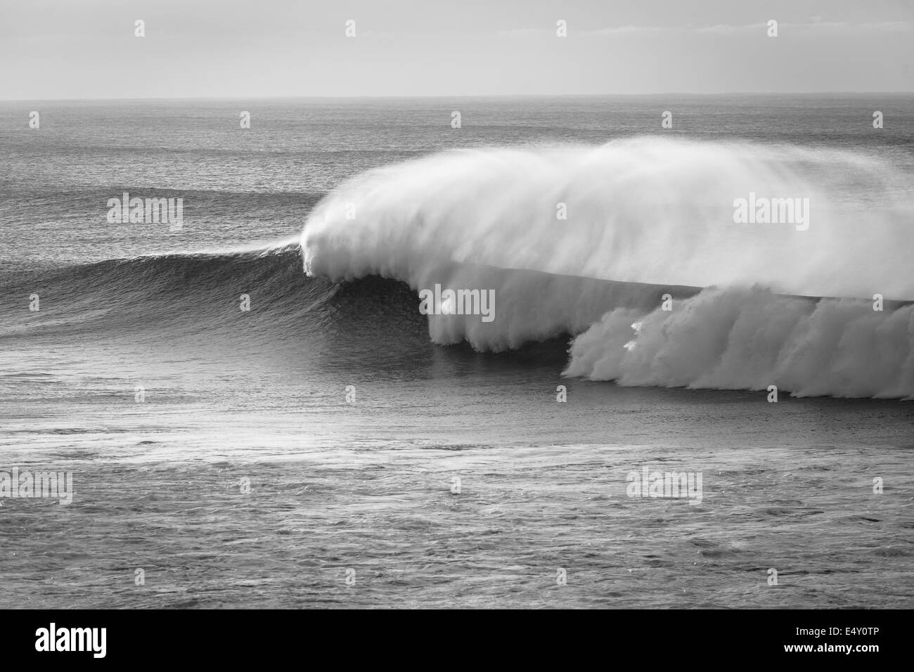 Large ocean wave crashing breaking with offshore wind spray in black white contrasts - Stock Image