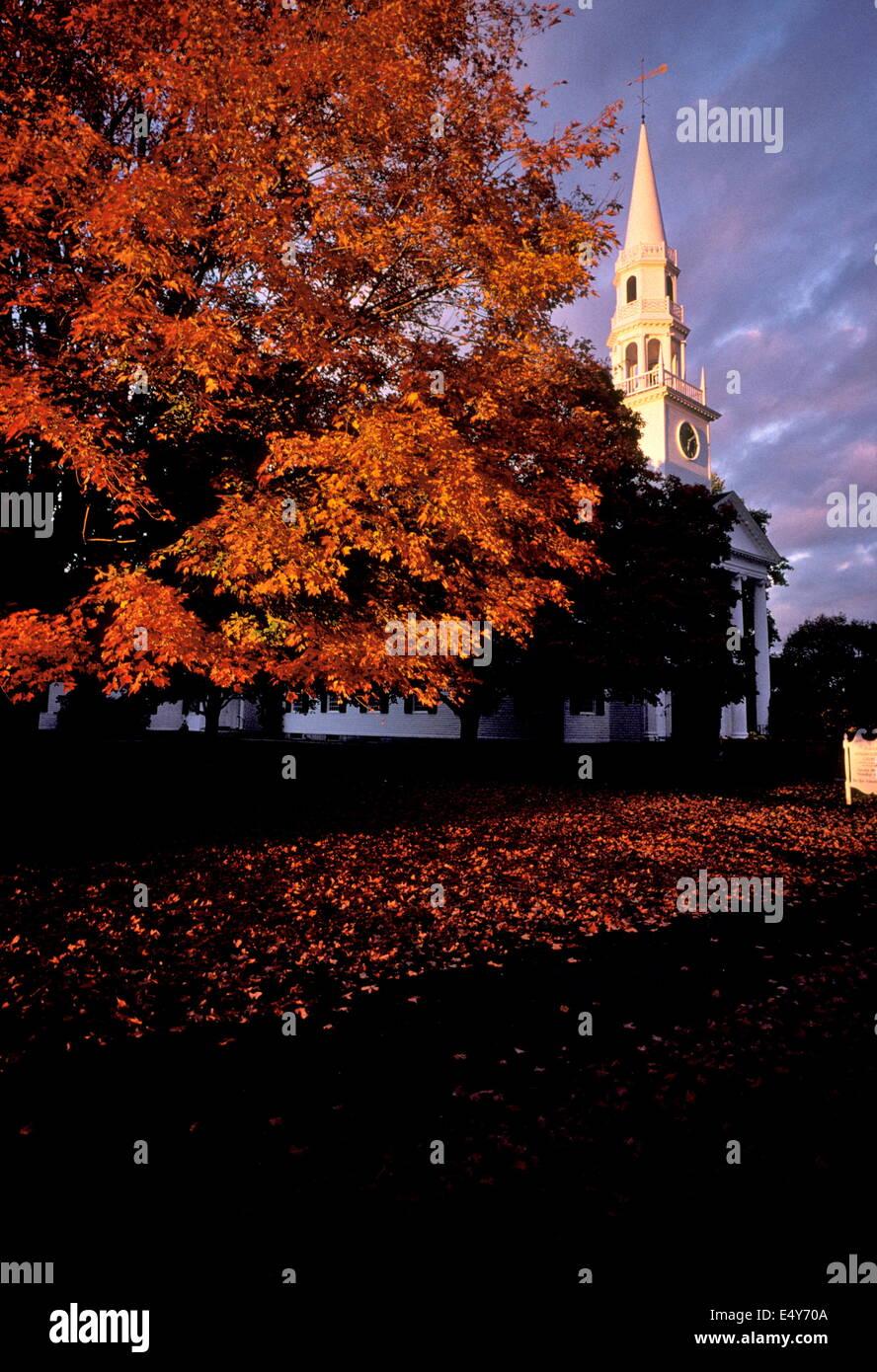 LITCHFIELD, CT. USA. FALL FOLIAGE IN LAST RAYS OF OCTOBER LIGHT.PHOTO:JONATHAN EASTLAND/AJAX - Stock Image