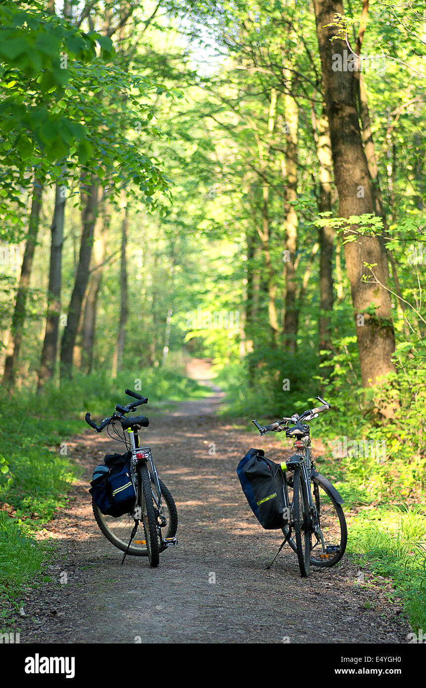 Bike tour to the forest. - Stock Image