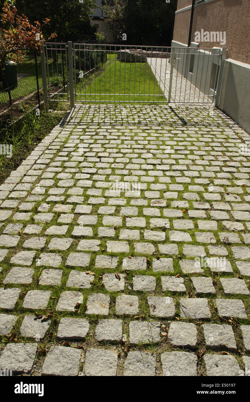 Pavement with grass-seed - Stock Image