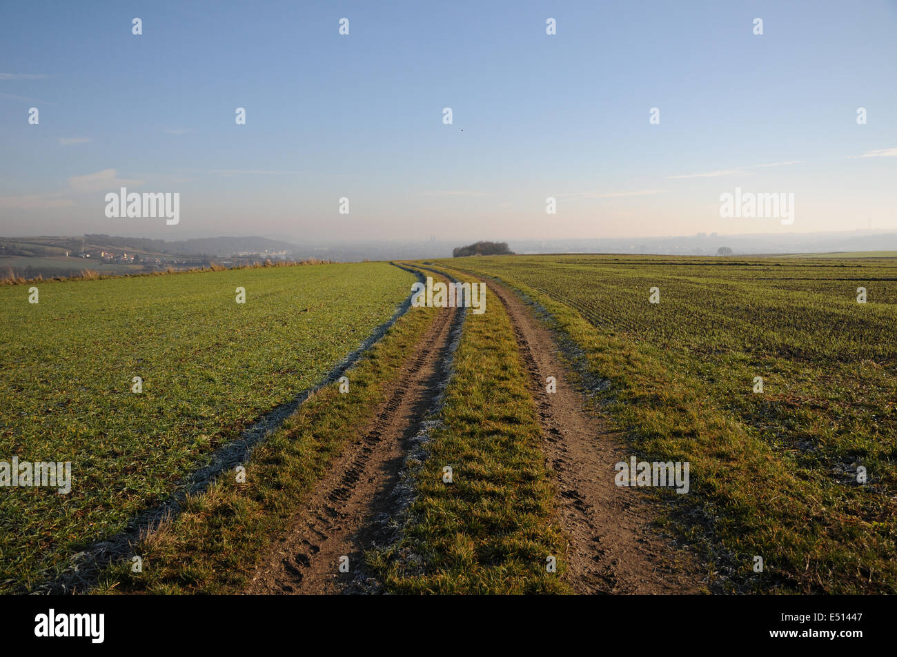 Way in the fields for tractors Stock Photo