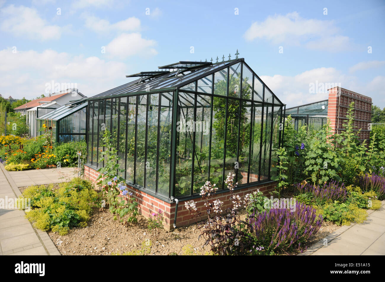 Greenhouse with glass-windows - Stock Image