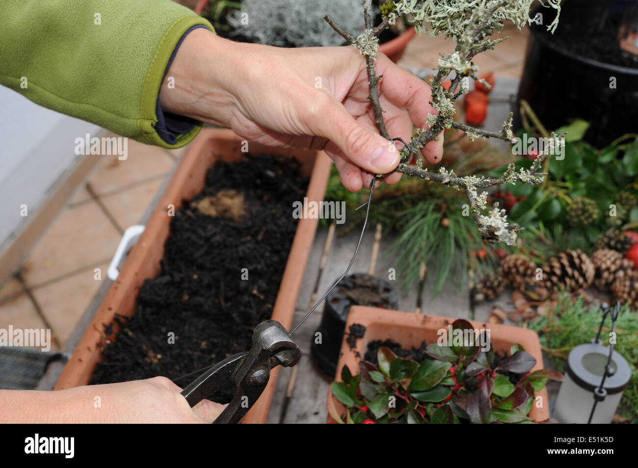 Floristry on balkony - Stock Image