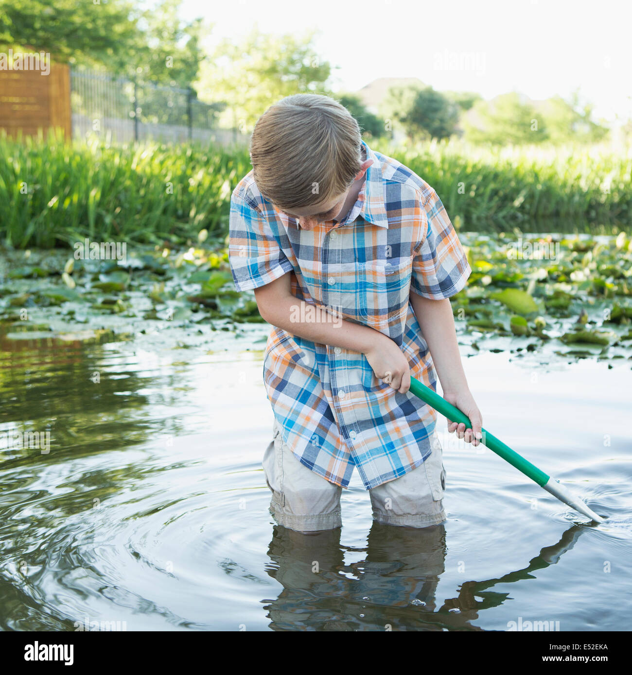 A young boy standing thigh deep in water, using a net to scoop up interesting objects from the water. - Stock Image