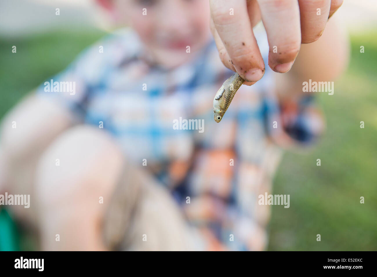 A young boy holding a small fish in his fingers. - Stock Image