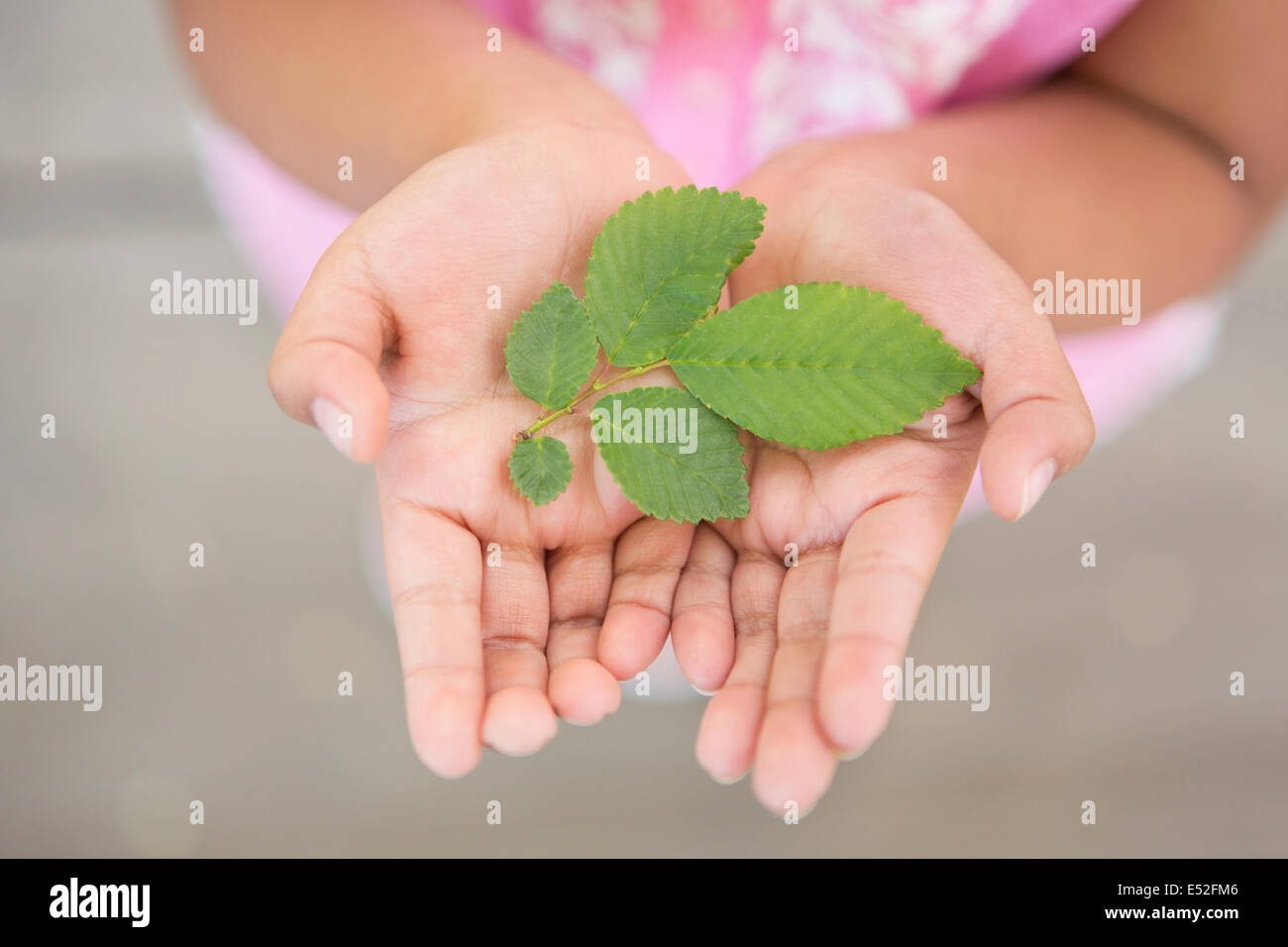 A child holding green leaves in the palms of her hands. - Stock Image