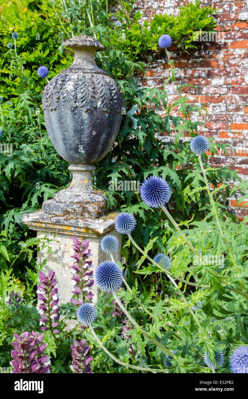 Corner of Hinton Ampner gardens in Hampshire UK featuring an urn on a stone pedestal flanked by herbaceous Echinops - Stock Image