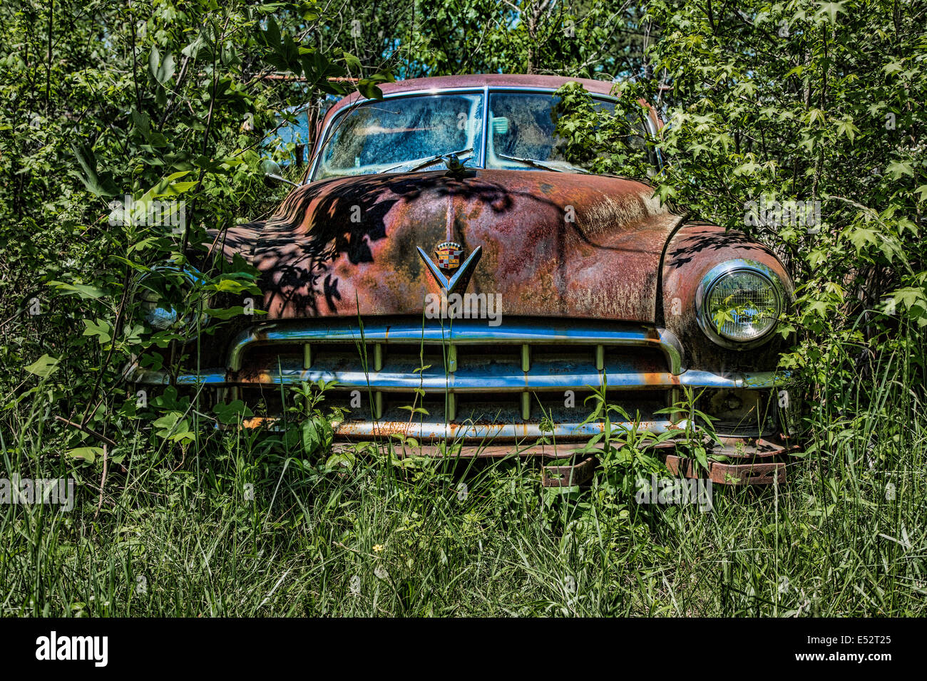 Rusted Junk Cars Trucks In Stock Photos & Rusted Junk Cars Trucks In ...