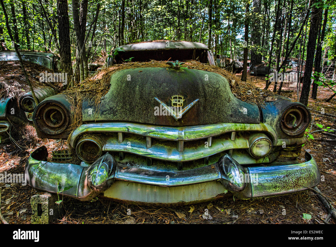 Rusted Junk Cars And Trucks In Old Car City In White Georgia