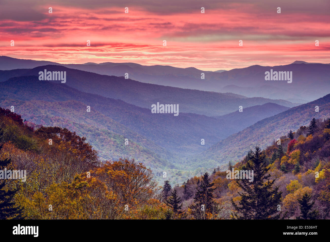 Dawn in the Smoky Mountains National Park, Tennessee, USA. - Stock Image
