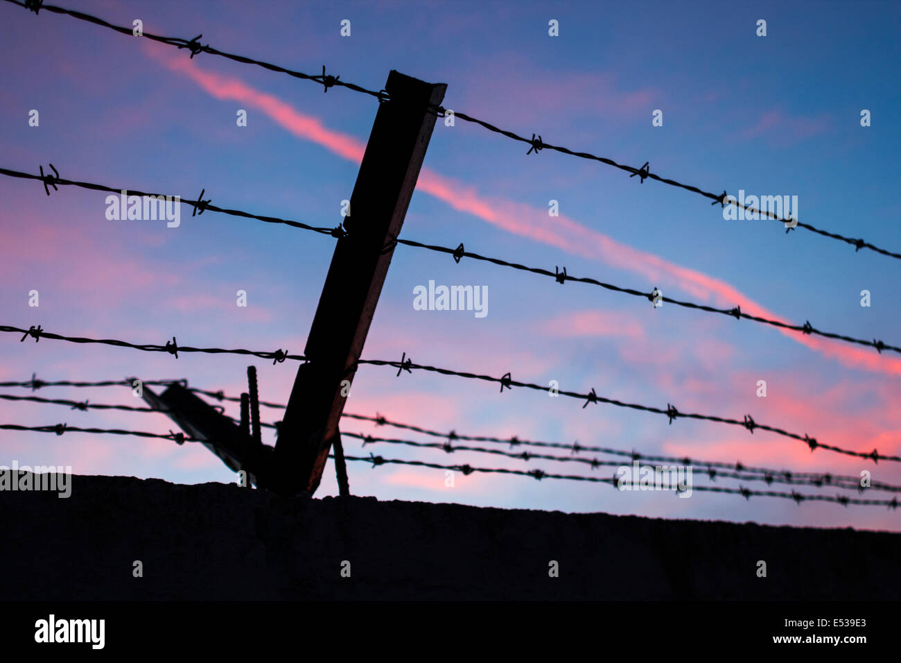 Barbed wire pink blu sky - Stock Image