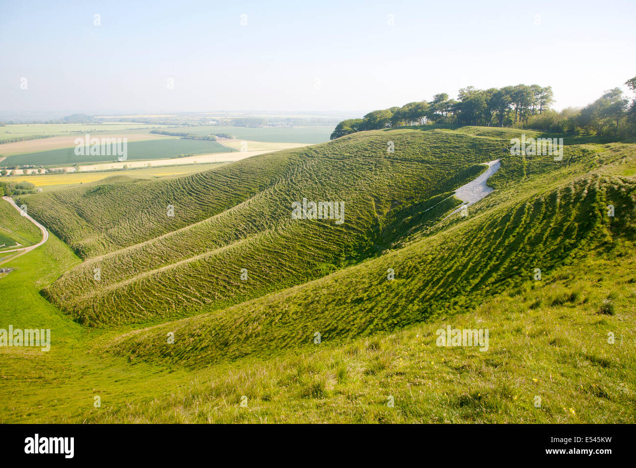 White horse in chalk scarp slope Cherhill, Wiltshire, England dating from 1780 - Stock Image