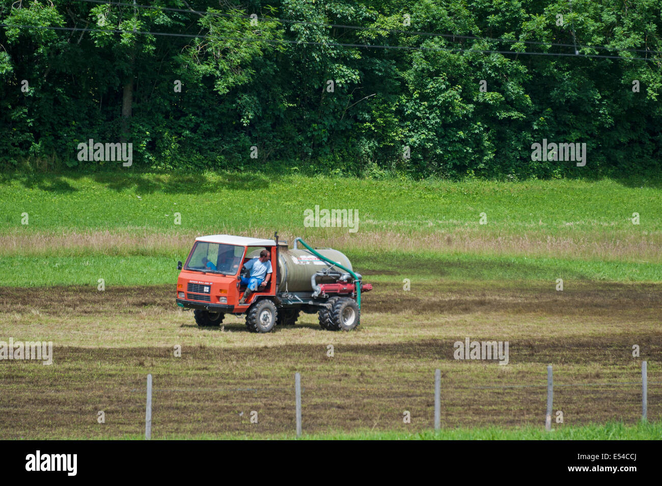 A Swiss farmer spreading muck on his hayfield. - Stock Image
