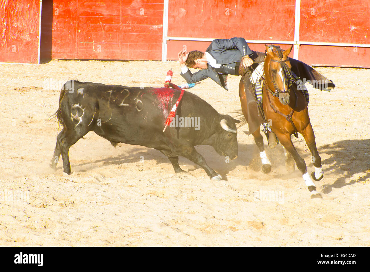 Bullfight Cut Out Stock Images Pictures