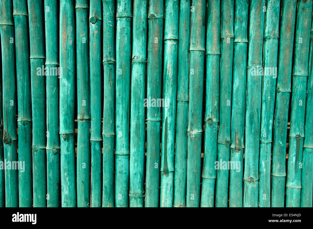 green painted bamboo wall background and texture in asia Stock Photo