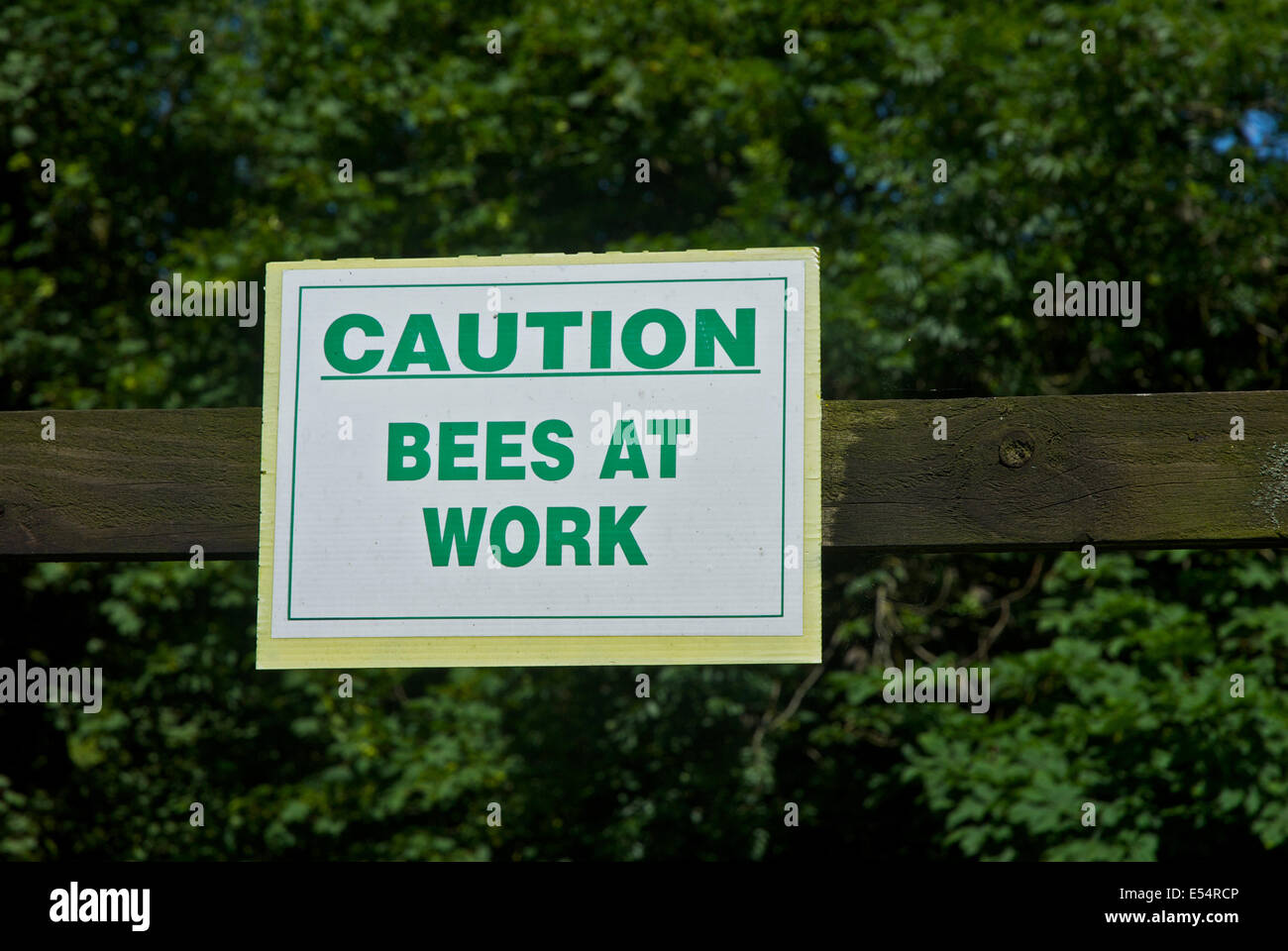 Sign: Caution, Bees at Work - Stock Image