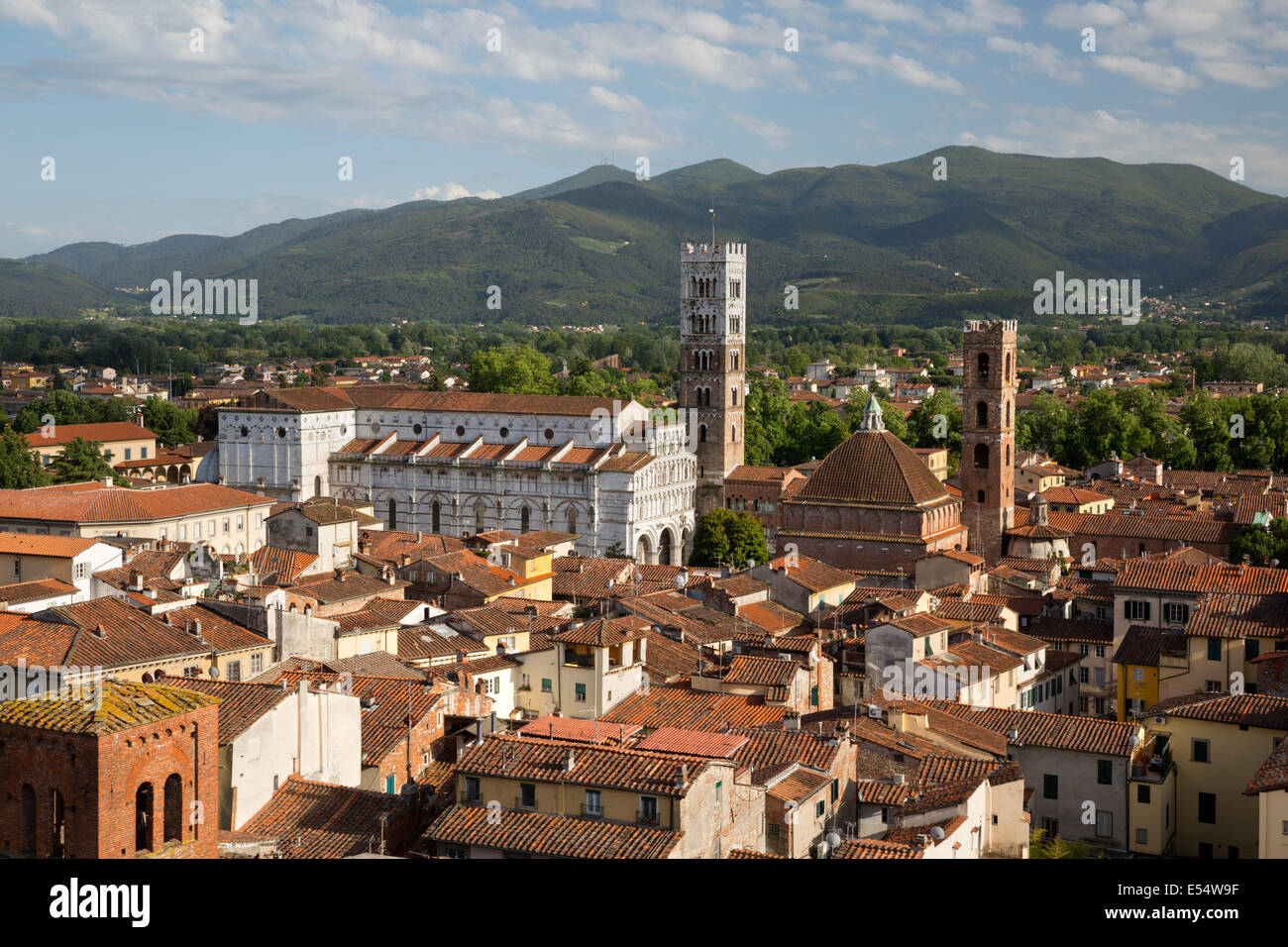 View over city from Torre Guinigi to Duomo di San Martino, Lucca, Tuscany, Italy, Europe - Stock Image