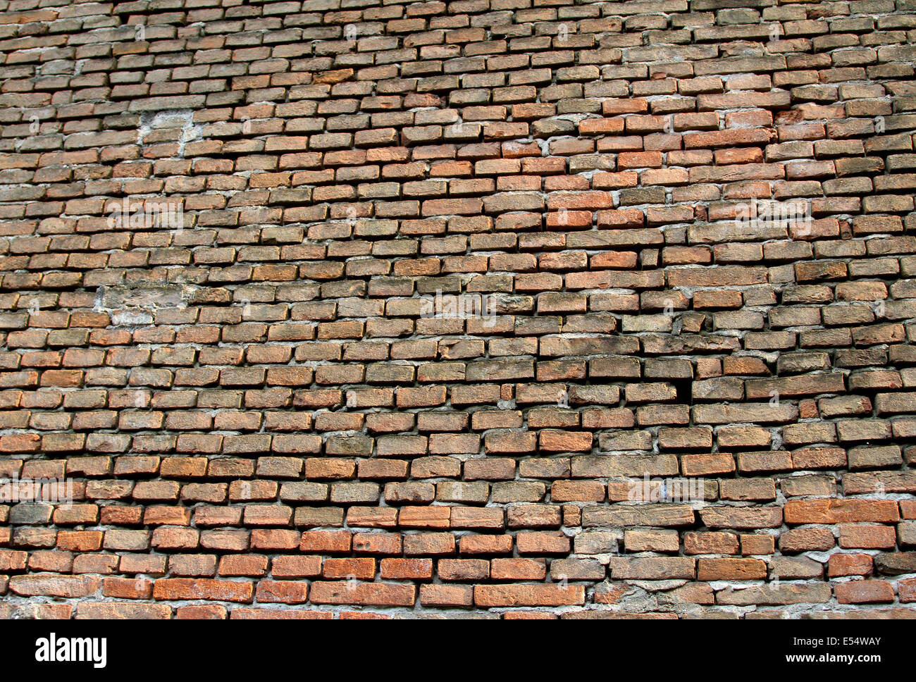 many red bricks of an impassable wall ideal as textures or BACKGROUND - Stock Image