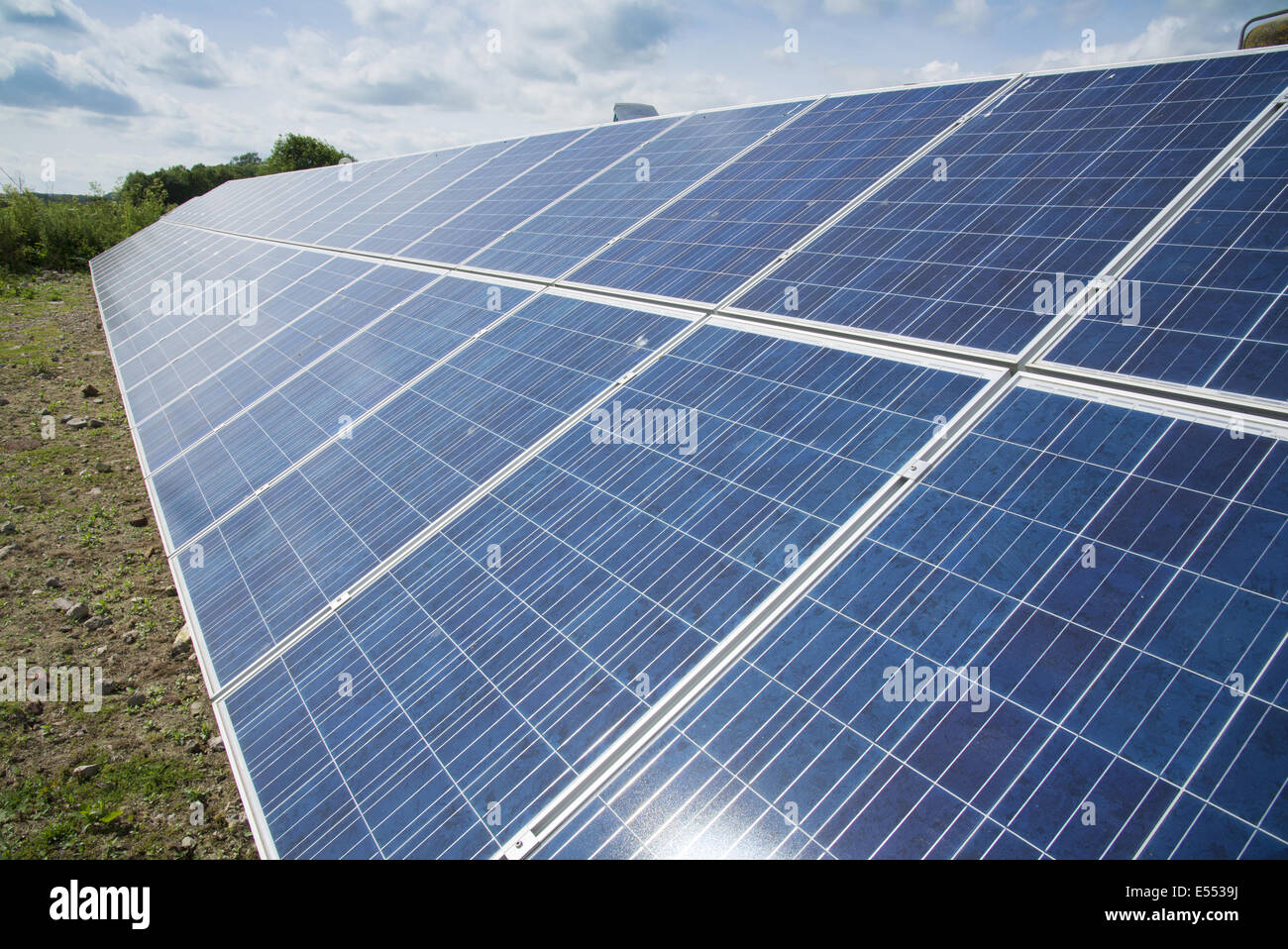 Solar panels used to generate electricity for pig farm, Driffield, East Yorkshire, England, June - Stock Image