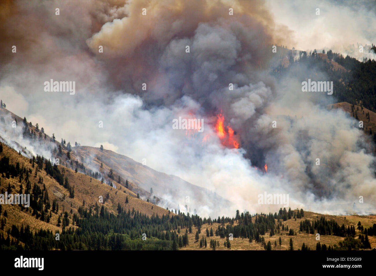 The Carlton Complex Fire burns out of control July 18, 2014 near Winthrop, Washington. The wildfire has consumed - Stock Image