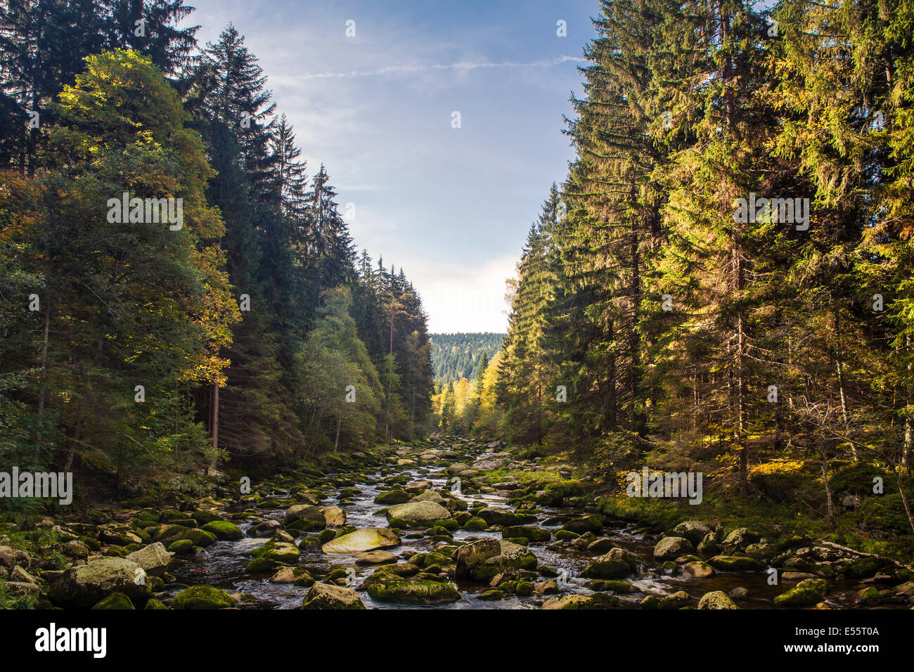 Valley of Vydra River, Bohemian Forest, Czech Republic - Stock Image