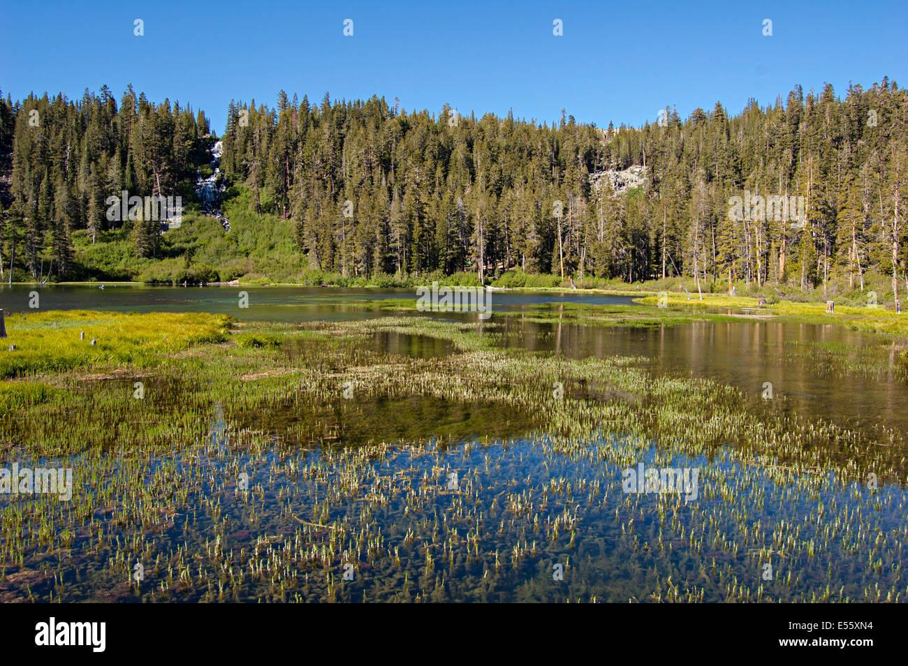 Mammoth Lakes, California. USA Stock Photo