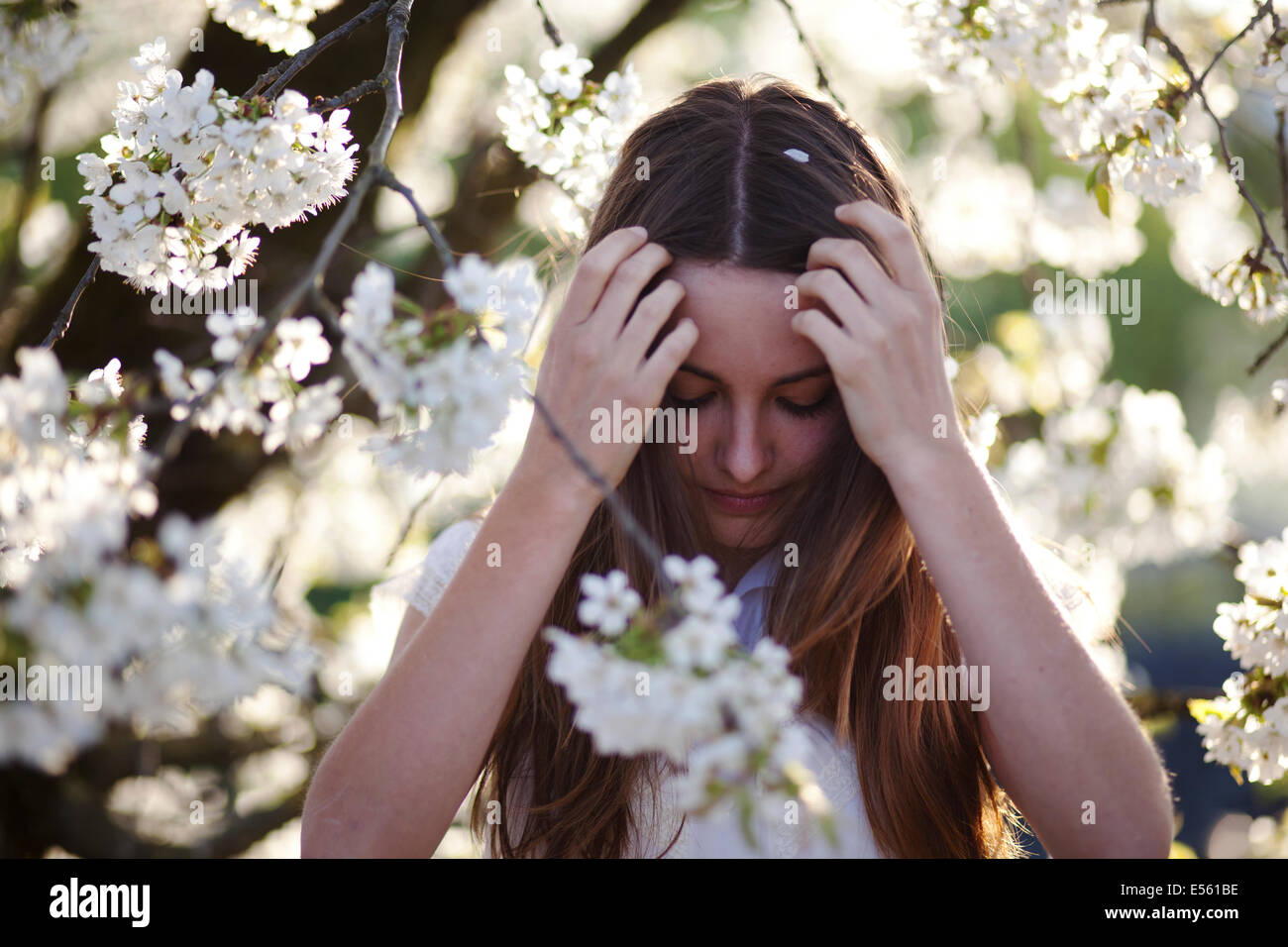 Portrait of a young woman with cherry blossoms - Stock Image