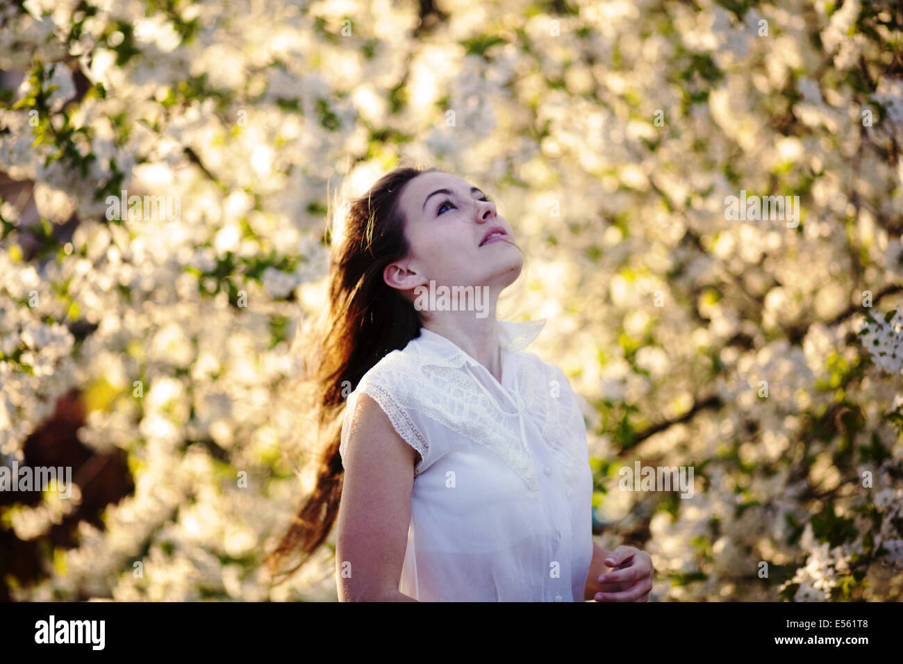 Portrait of a young woman with cherry blossoms Stock Photo