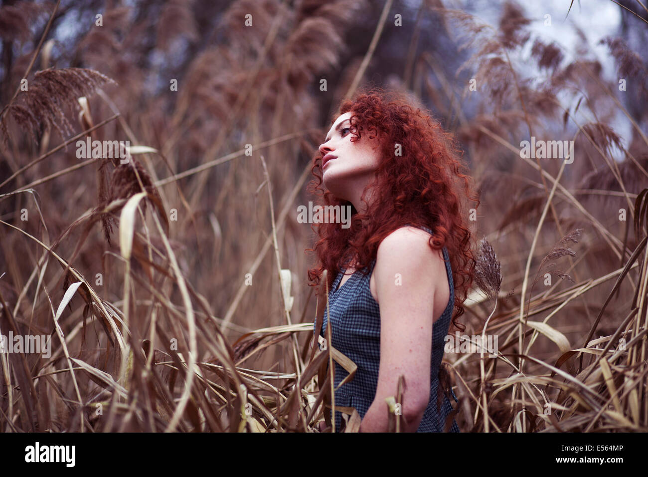 Woman with long red hair standing in the reeds, Portrait - Stock Image
