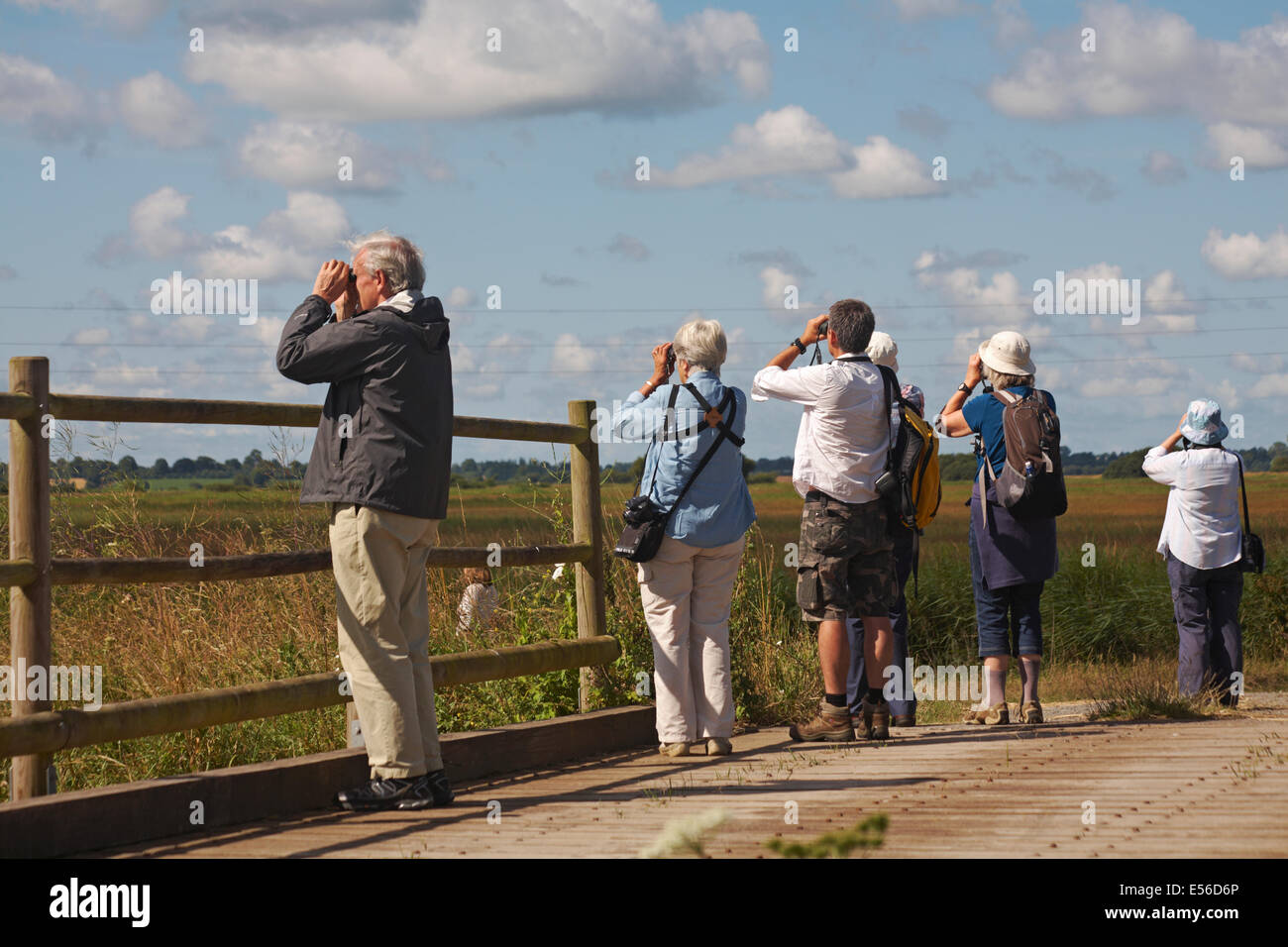 birdwatchers standing on bridge with binoculars at Normandy, France in July - Stock Image
