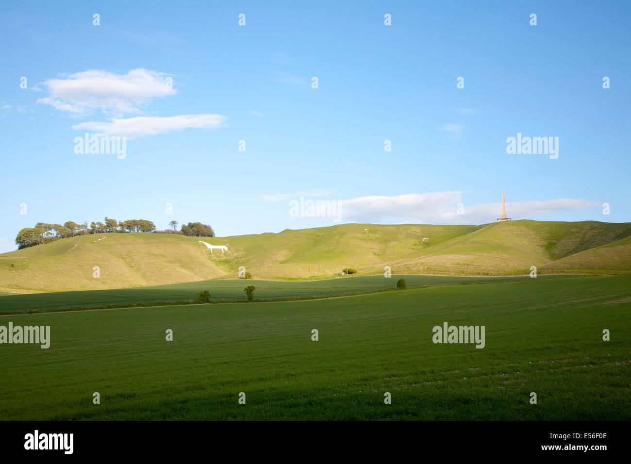 Scarp slope of White Horse on Cherhill Down and Lansdowne monument, Cherhill, Wiltshire, England Stock Photo