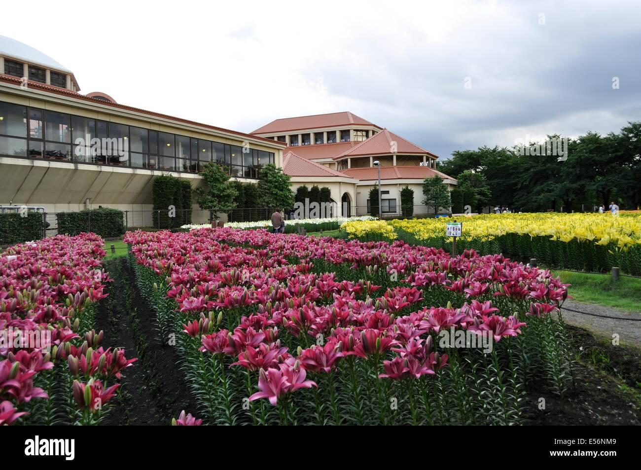 Fukaya Green Park,Aqua Paradise Patio,Fukaya,Saitama,Japan