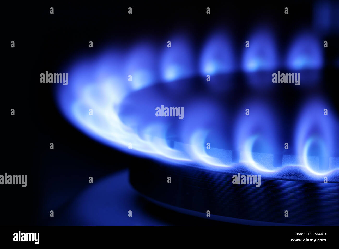 Blue gas flame on hob close up in the dark - Stock Image