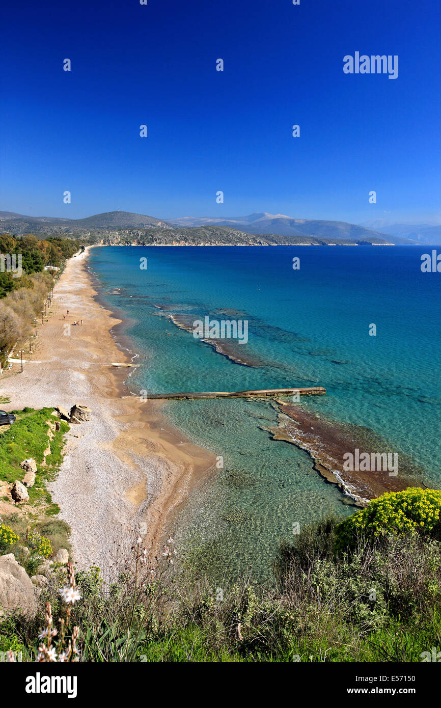 Plaka beach, close to Drepano and Tolo, Argolis, Peloponnese, Greece - Stock Image