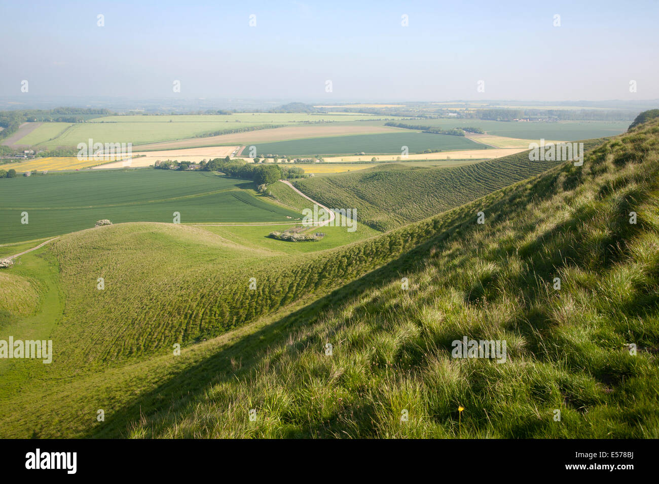 Summer view of arable fields and chalk landscape from Cherhill Down escarpment, Wiltshire, England Stock Photo