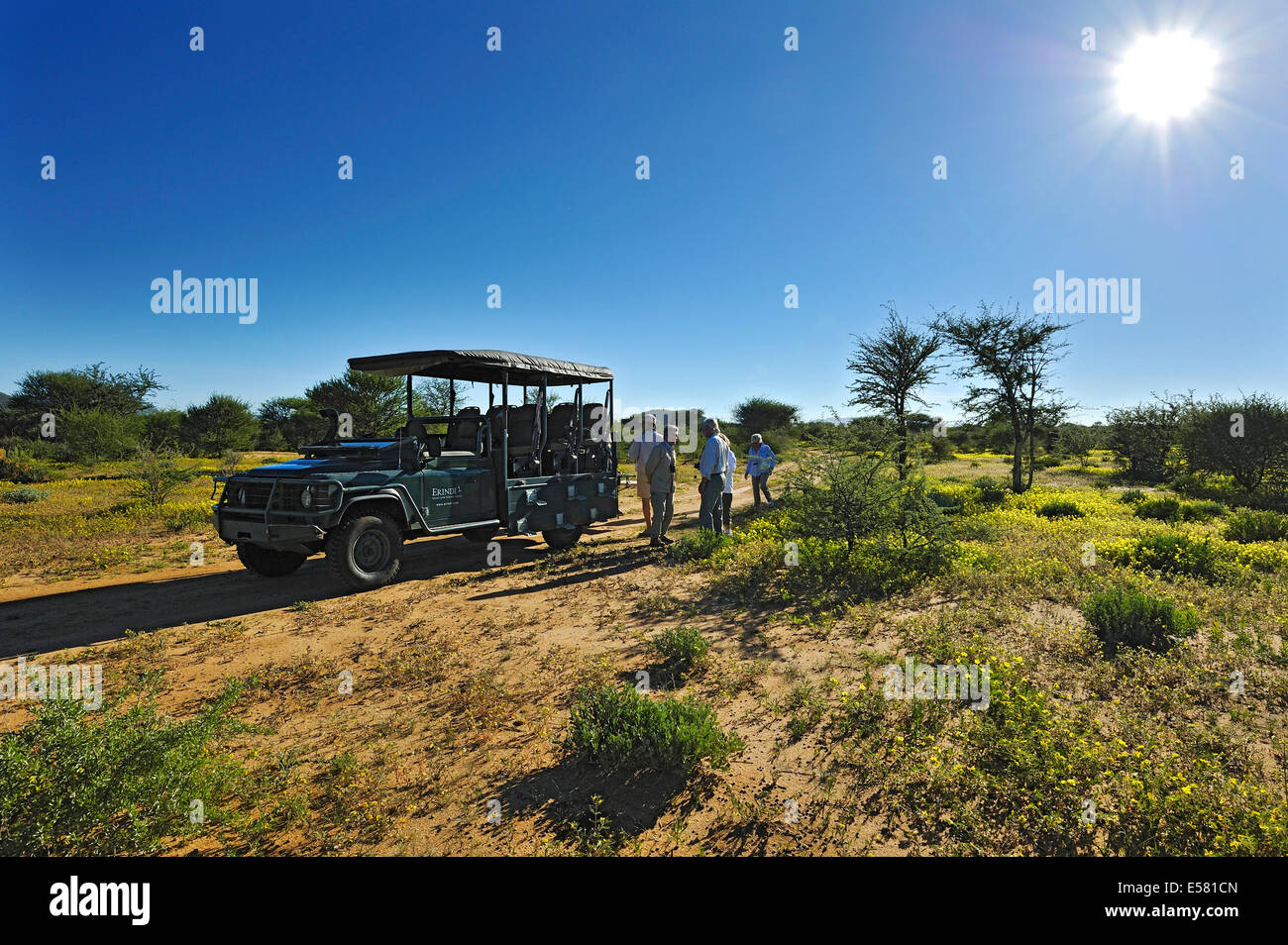 Safari carriage with tourists in blooming savannah, Erindi Game Reserve, Namibia - Stock Image