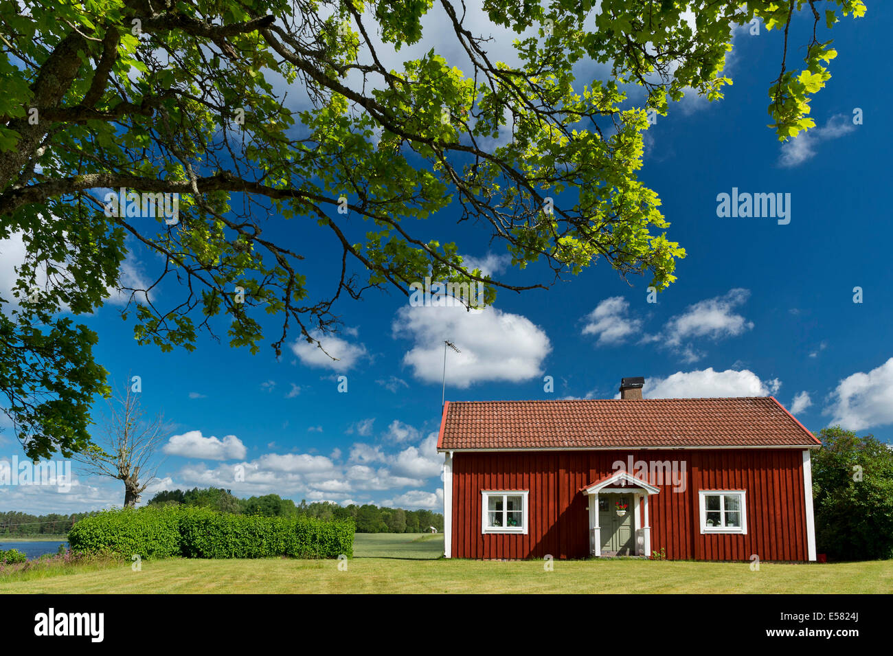 House painted Falu red, Kake Åsnen, Smaland, Sweden - Stock Image