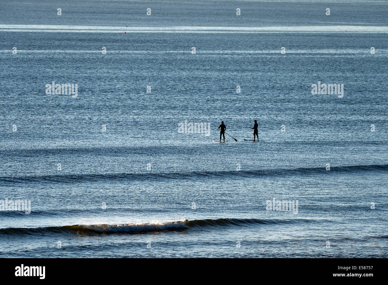 Paddle board surfers head out to catch a wave, Coast Guard Beach, Cape Cod, Massachusetts, USA - Stock Image