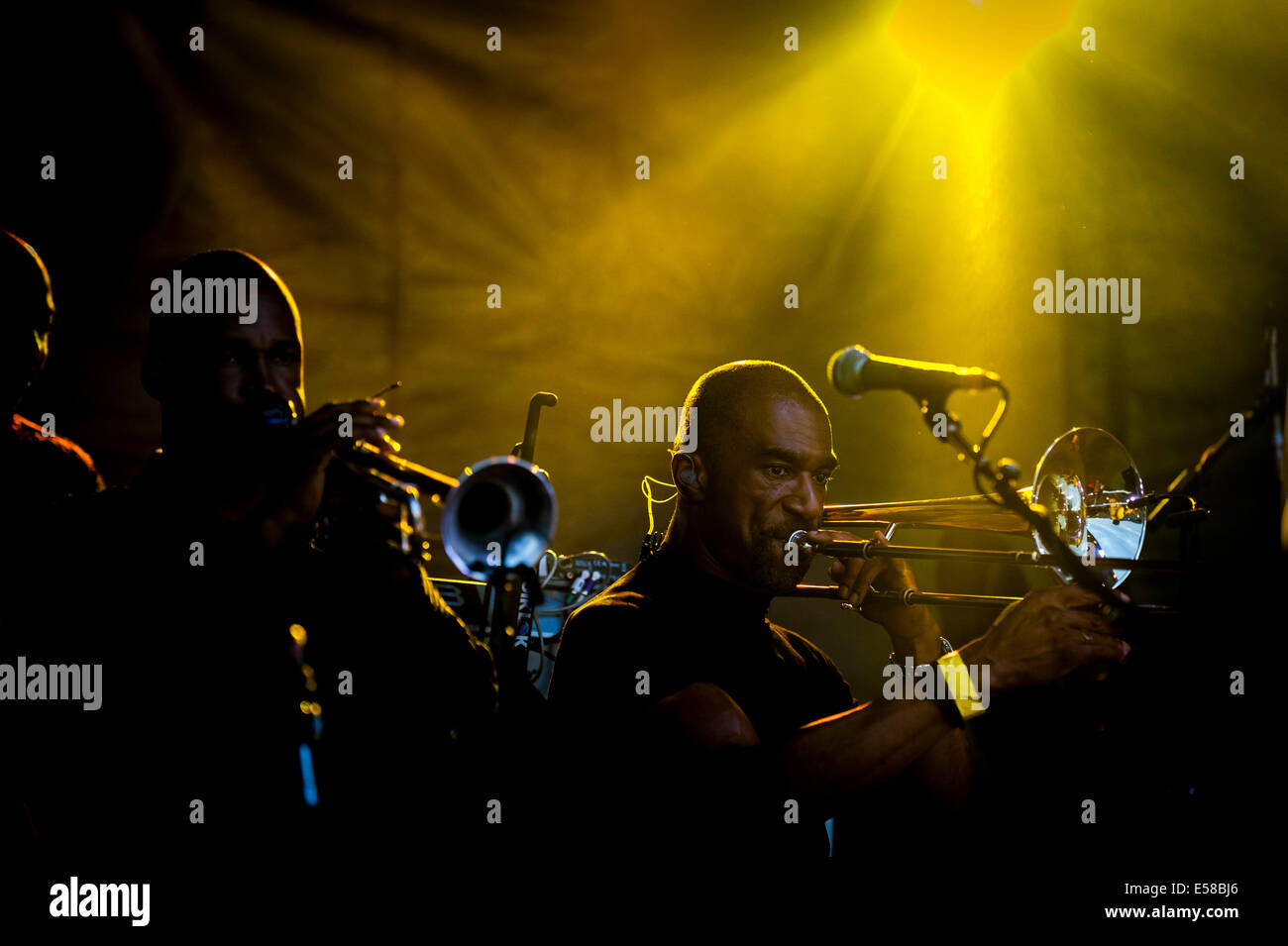 Musicians backing UB40 performing at the Brentwood Festival. - Stock Image