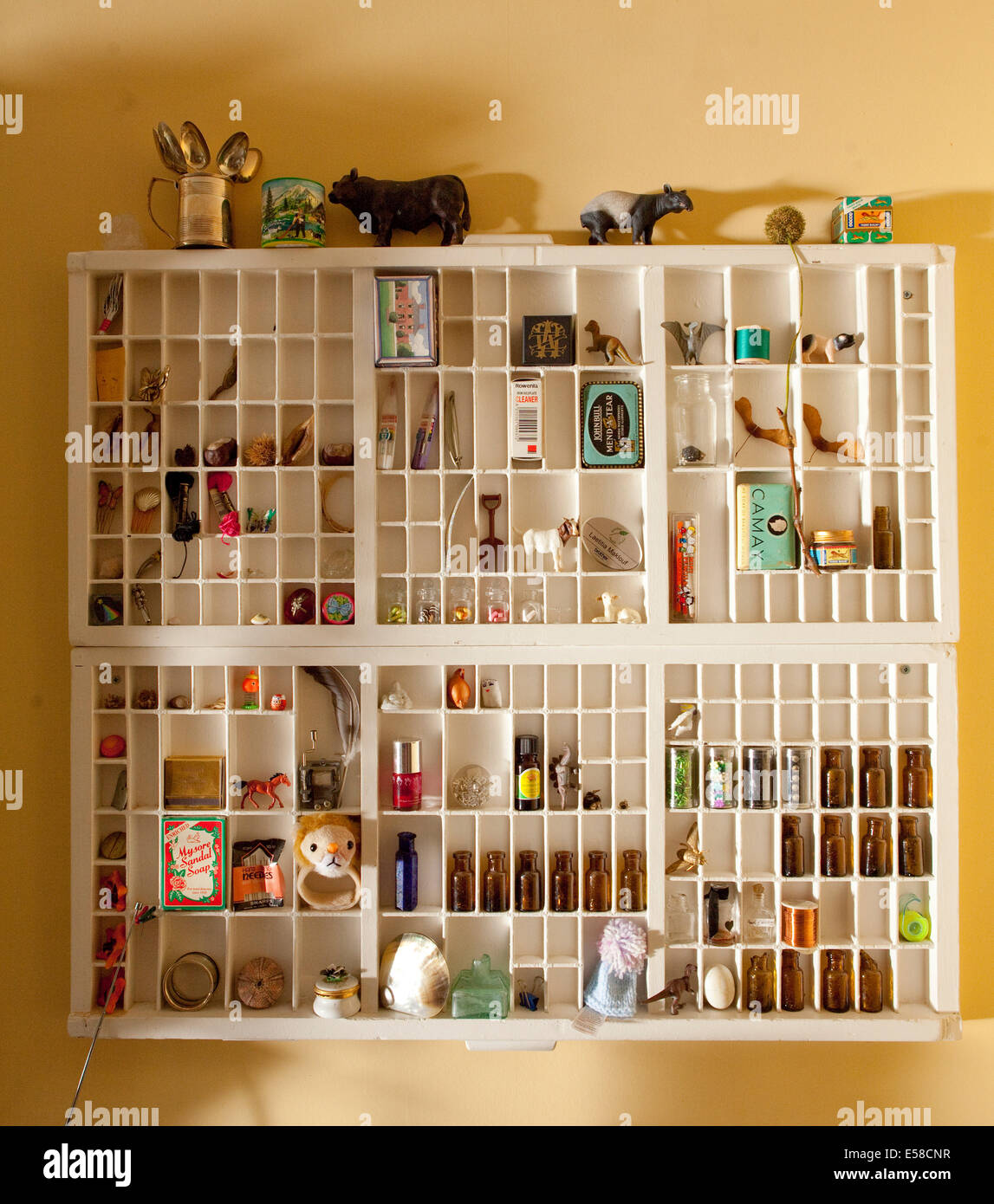 Wall mounted storage shelves in home of writer Laetitia Maklouf, London, UK - Stock Image