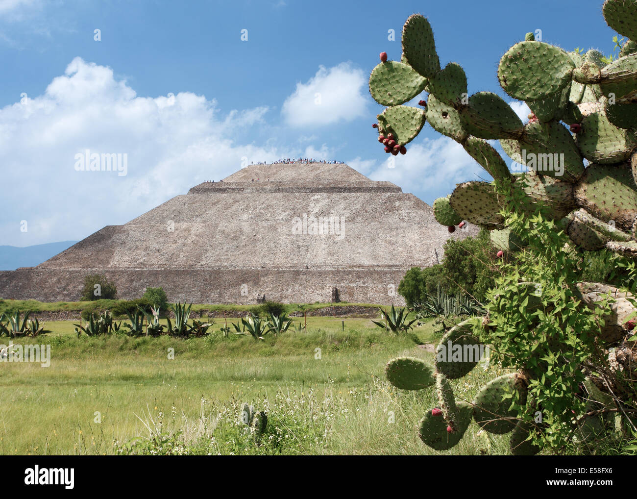 Pyramid of the Sun and Prickly Pear Cactus, Teotihuacan, Mexico - Stock Image