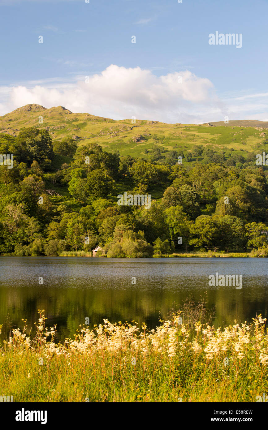 Rydal Water in the Lake District, UK. - Stock Image
