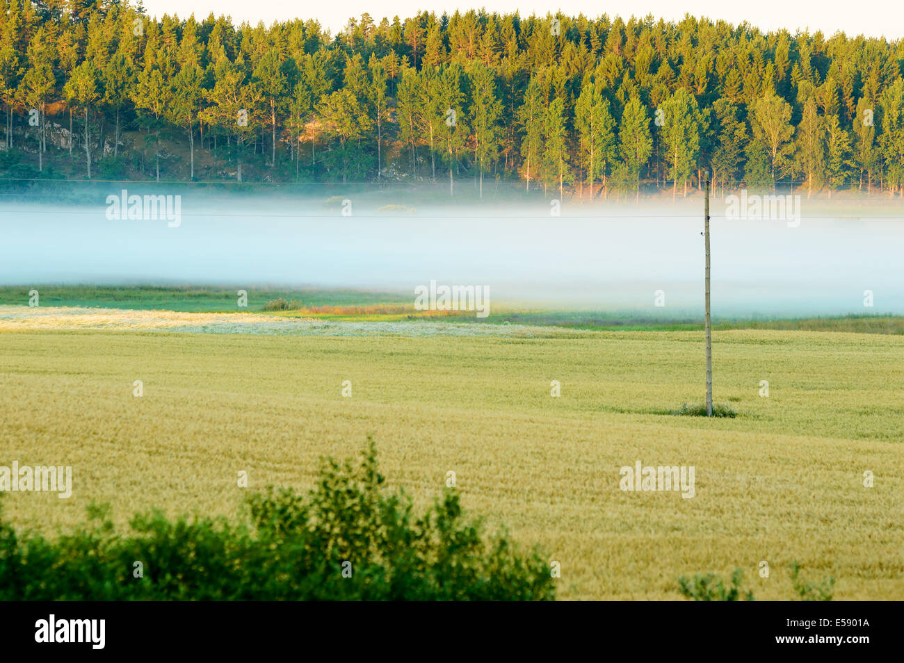 Early morning fog rolling in over farm land. - Stock Image
