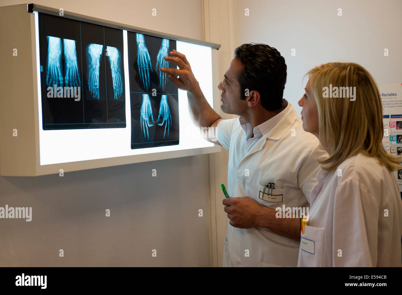 Doctors examining X-ray report in hospital - Stock Image